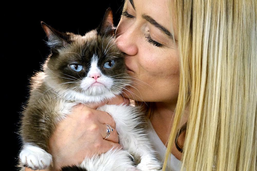 Почему россияне больше любят кошек, а не собак?